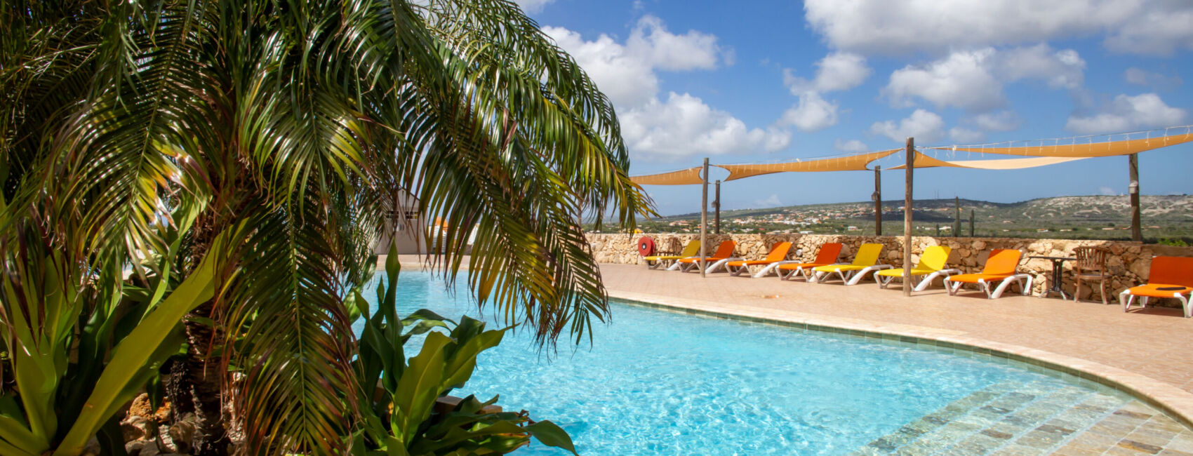 Hillside apartments Bonaire - -4464